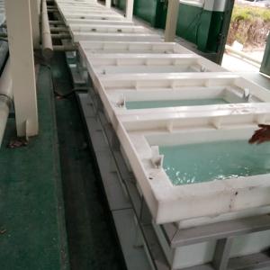 聚丙烯PP酸洗槽